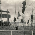 Fans in Trees. Match between Belgium and Holland in 1913.
